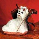 Shih Tzu, White Devil