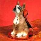 Boxer Devil