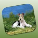 Wire Haired Fox Terrier Mouse Pad