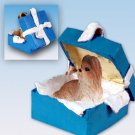 BGBD26B Shih Tzu, Tan Blue Gift Box Ornament