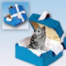 BGBC16 Maine Coon Silver Blue Gift Box Ornament