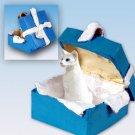 BGBC19 Oriental Shorthair White Blue Gift Box Ornament