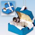 BGBA25 Sheep, Dall Blue Gift Box Ornament