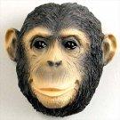 AM13 Chimpanzee Magnet
