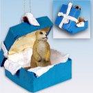 BGBA74 Prairie Dog Blue Gift Box Ornament