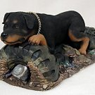 DFLS11 Rottweiler My Dog Special Edition