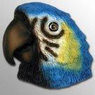 BM40 Parrot Blue Magnet