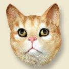 CHF04 Tabby Red Shorthair  Doogie Head