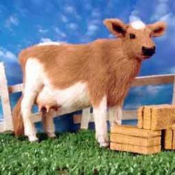 AFF44 Guernsey Cow Fur Figurine