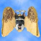 DHAM13B Schnauzer, Gray Angel Magnet