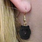 DHEH21A Chow Black Earrings Hanging