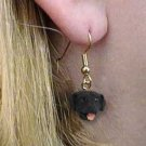 DHEH24A Lab Ret Black Earrings Hanging