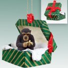 GGBA13 Chimpanzee Green Gift Box Ornament