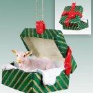 GGBA45 Goat, White Green Gift Box Ornament