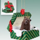 GGBA62 Grizzly Bear Green Gift Box Ornament