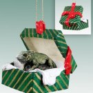 GGBA71 Iguana Green Gift Box Ornament