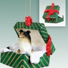 GGBD23B Collie, Tricolor Green Gift Box Ornament