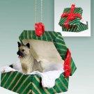 GGBD55A Akita Gray Green Gift Box Ornament