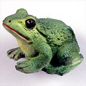 NM04 Frog Magnet