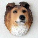 PDM23A Collie Sable Puppy Magnet