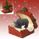 RGBA24 Rhinoceros Red Gift Box Ornament
