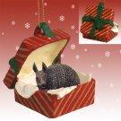 RGBA66 Armadillo Red Gift Box Ornament
