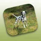 WCFP02 Dalmatian Mouse Pad
