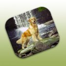 WCFP09Z Golden Retriever Mouse Pad