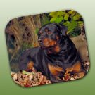 WCFP11Z Rottweiler Mouse Pad