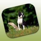 WCFP12 Boston Terrier Mouse Pad