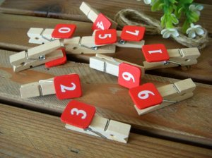 Clothespin with Number Plate 0 � 9 (On Sale)