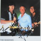 SUPERB SHADOWS SIGNED PHOTO + COA!!!