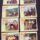 SHAGGY  Lobby Card SET  George Nokes BRENDA JOYCE  1948