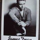 "JAMES DEAN  Original 1982  Publicity POSTER  16"" x 23"""