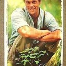BRAD PITT Personality POSTER Legends of the Fall  BODY NEVER HUNG Brand New