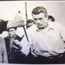 JAMES DEAN Ready to RUMBLE  Photo  REBEL WITHOUT A CAUSE Gang Fight Scene