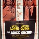 SOPHIA LOREN Original BLACK ORCHID 1-Sheet Movie POSTER Anthony Quinn PARAMOUNT