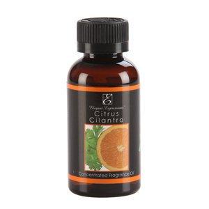 Elegant Expressions Fragrance Citrus Cilantro Potpourri Hot Oil Burner 2 oz