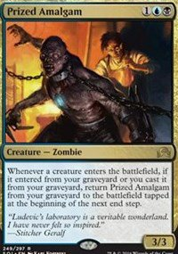 Magic The Gathering - Shadows Over Innistrad - 249 - Prized Amalgam