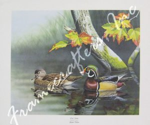 """Wood Ducks"" by Ronald J. Louque 18x24"