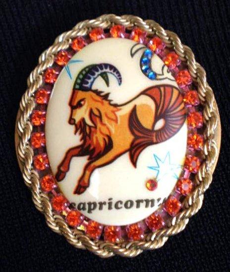 #P010 - Capricorn Zodiac Pin