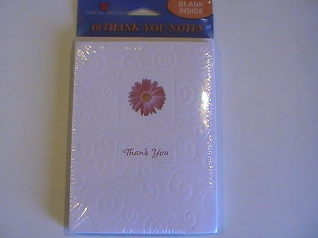 American Greetings Textured Daisy Thank You Note Cards