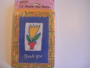 Carlton Cards Thank You Note Cards