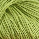 Elsebeth Lavold Bambool Bamboo Wool Blend Yarn #20 Green