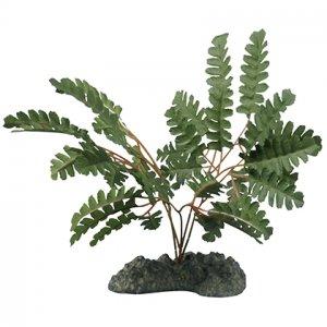 "Aquatic Series Terrarium Plant Maidenhair Fern 11"""
