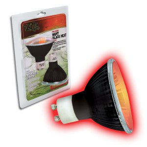 Halogen Bulb 75 Watt Night Black Light
