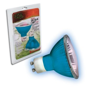 Halogen Bulb 25 Watt Day Blue Light