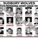 1961-62 EPHL SUDBURY WOLVES HEADSHOTS TEAM PHOTO