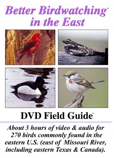 Better Bird Watching DVD (east)