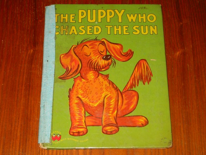 The Puppy Who Chased The Sun